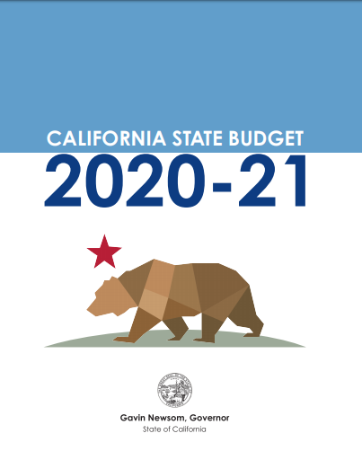 Stae Budget 20-21 Cover Image